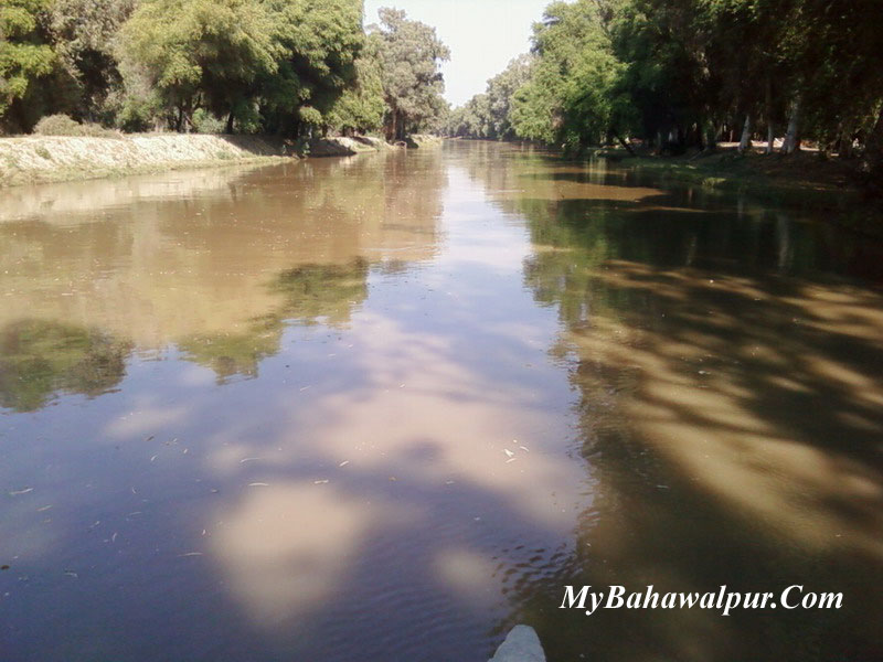 Lal Suhanra National Park Canal